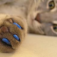 Katze Pflege Gesundheitspflege Nagelschutz Rot Grün Blau Rosa Jägergrün