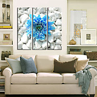 cheap Stretched Canvas Prints-Stretched Canvas Print Botanical Three Panels Horizontal Print Wall Decor Home Decoration