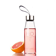 450ml H2O Patroon Glas Water Bottle, L6.5cm x W6.5cm x H20.5cm