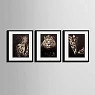 baratos -Floral/Botânico Quadros Emoldurados / Conjunto Emoldurado Wall Art,PVC Preto Cartolina de Passepartout Incluída com frame Wall Art