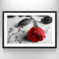 billige Innrammet kunst-Blomstret/Botanisk / Stilleben Innrammet Kunstrykk Wall Art,Polystyrene Svart Passpertou Inkludert med Frame Wall Art
