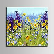 billiga Blom-/växtmålningar-Hang målad oljemålning HANDMÅLAD - Blommig / Botanisk Medelhavet Med Ram