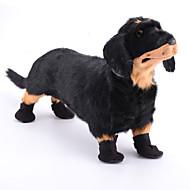 Σκυλιά Παπούτσια & Μπότες Μαύρο Άνοιξη/Χειμώνας Νάιλον