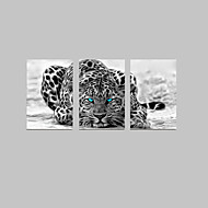 Canvas Set Abstract Dieren Modern Traditioneel,Drie panelen Verticaal Print Art Muurdecoratie For Huisdecoratie