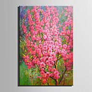 El-Boyalı Çiçek/Botanik Yağlıboya,Modern / Avrupa Tipi Tek Panelli Kanvas Hang-Boyalı Yağlıboya Resim For Ev dekorasyonu