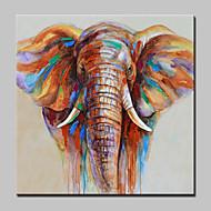 צייר צבוע ביד, שמן, ציור קיר, בד, מודרני, קיר, תקציר, קיר, תמונות
