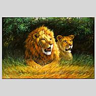 Handgeschilderde Abstract Dieren Schilderijen + Prints,Modern Klassiek Eén paneel Canvas Hang-geschilderd olieverfschilderij For