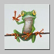 billiga Djurporträttmålningar-HANDMÅLAD Djur Pop olje,Moderna En panel Kanvas Hang målad oljemålning For Hem-dekoration
