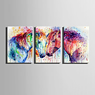 E-HOME Stretched Canvas Art Two Colored Horses Decoration Painting Set Of 3