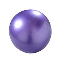 65cm Bola de Fitness Ioga Ginásio