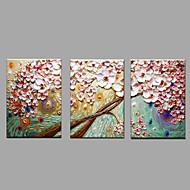 halpa -Maalattu Kukkakuvio/Kasvitiede Vaakasuora,Pastoraali European Style 3 paneeli Kanvas Hang-Painted öljymaalaus For Kodinsisustus