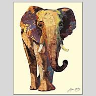 billiga Djurporträttmålningar-Hang målad oljemålning HANDMÅLAD - Djur Abstrakt Duk / Sträckt kanfas