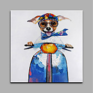 Hand-Painted Animal SquareModern One Panel Canvas Oil Painting For Home Decoration