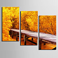 Prints-3 Kangas Verticaal Print Muurdecoratie Huisdecoratie