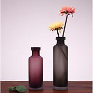 creatieve stijl zachte outfit eenvoudige mode-sieraden ornamenten home furnishing frosted glazen vaas