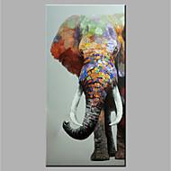 מצויר ביד בעלי חיים אנכי,מודרני 1pc בד ציור שמן צבוע-Hang For קישוט הבית