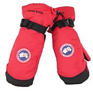 お買い得  手套-スキーミトン 男女兼用 ミトン 保温 防水 防風 フロッキー スキー 冬