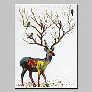 billiga Djurporträttmålningar-mintura® stor storleksanpassad handmålade sikahjort och fåglar djuroljemålningar på duk väggkonstbilder för heminredning ingen ram