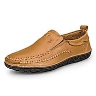 Muškarci Cipele Koža Mekana koža Proljeće Jesen Cipele za ronjenje svečane cipele Udobne cipele Natikače i mokasinke za Kauzalni Ured i