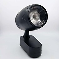 preiswerte LED-Systemleuchten-1pc 30W 1 LEDs Leicht zu installieren Weglampen Warmes Weiß Natürliches Weiß Weiß Wechselstrom 86-220