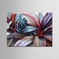 billiga Stilleben-Hang målad oljemålning HANDMÅLAD - Stilleben Moderna Duk