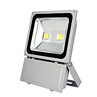 tanie Naświetlacze-1szt 100 W Reflektory LED Wodoodporne Dekoracyjna Oświetlenie zwenętrzne Zimna biel 85-265V