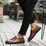 tanie Obuwie męskie-Męskie Buty Skóra Wiosna Lato Comfort Mokasyny i pantofle na Casual Na wolnym powietrzu Black Light Brown Dark Brown