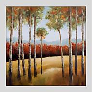 billiga Landskapsmålningar-Hang målad oljemålning HANDMÅLAD - Landskap / Blommig / Botanisk Moderna Duk