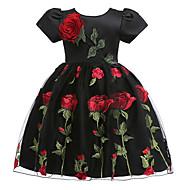 Děti Dívčí Květinový Krátký rukáv Šaty