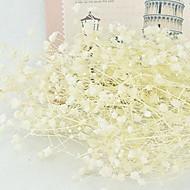 billige Kunstige blomster-Kunstige blomster 50 Gren Klassisk Stilfull Brudeslør Bordblomst