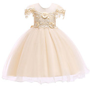 Kids / Toddler Girls' Active / Sweet Solid Colored Lace / Embroidered / Lace Trims Sleeveless Maxi Cotton / Polyester Dress Gold