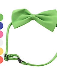 Cat Dog Collar Adjustable/Retractable Bowknot Red Black White Green Blue Pink Yellow Textile