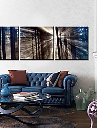 cheap -Stretched Canvas Art Landscape Soft Light Set of 3
