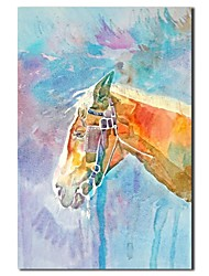 abordables -iarts®hand pintado animal caballo pintura al óleo con marco de estirado