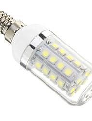 E14 LED-kolbepærer 36 leds SMD 5050 Kold hvid 480lm 6000-6500K Vekselstrøm 220-240V