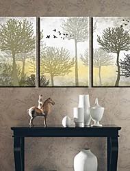 Недорогие -Отпечатки на холсте Наборы холстов ботанический 3 панели Горизонтальная С картинкой Декор стены For Украшение дома