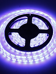 cheap -Waterproof 5M 60W 60x5730SMD 7000-8000LM  6000-7000K Cool White light LED Strip Light (DC12V)