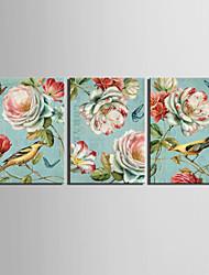 abordables -estirados aves lona impresión del vintage de animales y el conjunto floral de 3 1301-0231