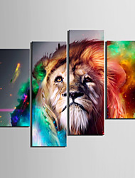 abordables -Toiles tendues Art Lion Animal Set de 4