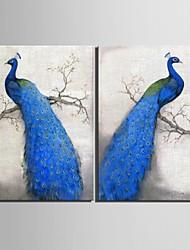 baratos -arte lona esticada azul pavão decoração pintura conjunto de 2