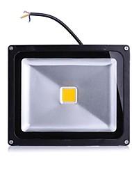 Projecteurs LED 1 diodes électroluminescentes LED Haute Puissance Blanc Chaud Blanc Froid 2000lm 2800-7000K AC 85-265V