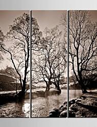 e-Home® allungata tela fiumi d'arte e alberi pittura decorativa set di 3