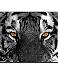 """cheap -Case for Macbook Air 11.6""""/13.3"""" Animal Plastic Material The Eye of Tiger Design Full-Body Protective Plastic Case"""