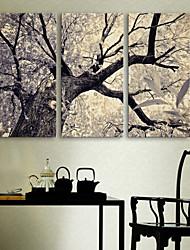 abordables -e-Home® lienzo de arte el conjunto de pintura decoración del árbol de 3