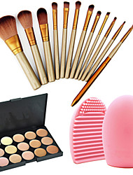cheap -12 Makeup Brushes Set Nylon Professional / Travel / Eco-friendly Face / Eye / Lip Others