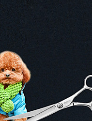 Недорогие -Ножницы - Нержавеющая сталь Собаки
