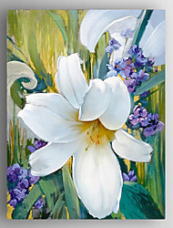 Oil Painting Impression White Flower Painting Hand Painted Canvas with Stretched Framed Ready to Hang