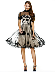cheap -A-Line High Neck Knee Length Tulle Cocktail Party Homecoming Prom Company Party Dress with Appliques Lace by TS Couture®