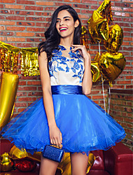 cheap -Ball Gown Jewel Neck Short / Mini Tulle Cocktail Party Dress with Appliques Buttons by TS Couture®
