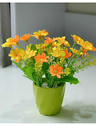 High Quality Daisies Flower With Pot Artificial Flower With Pot Emboitement (Flowerpot Random Color)